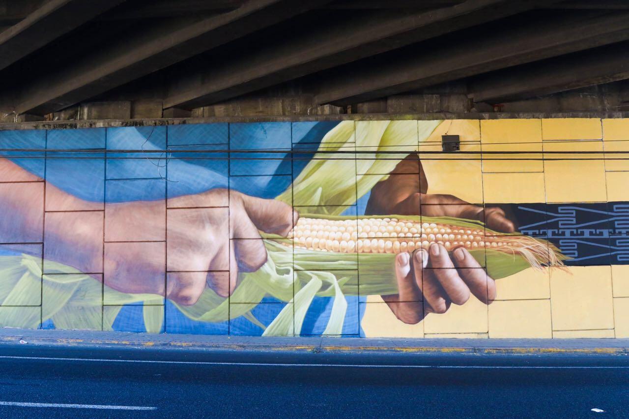 Presentan En Tlajomulco El Proyecto Traza Haran Mega Murales En El