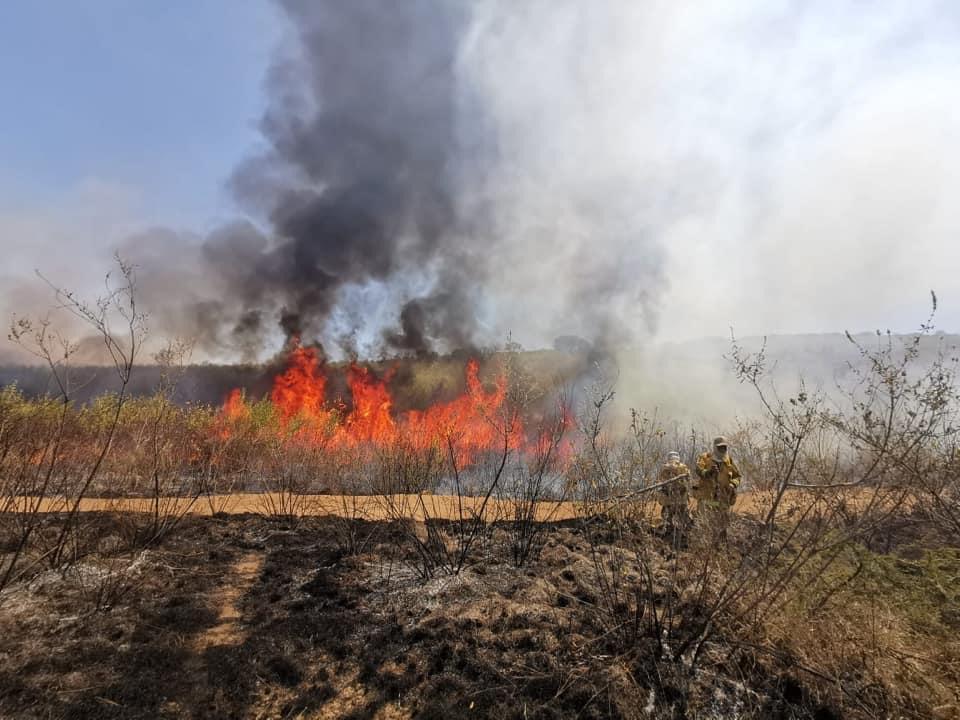 Estiaje dejó 25 mil hectáreas afectadas por incendios